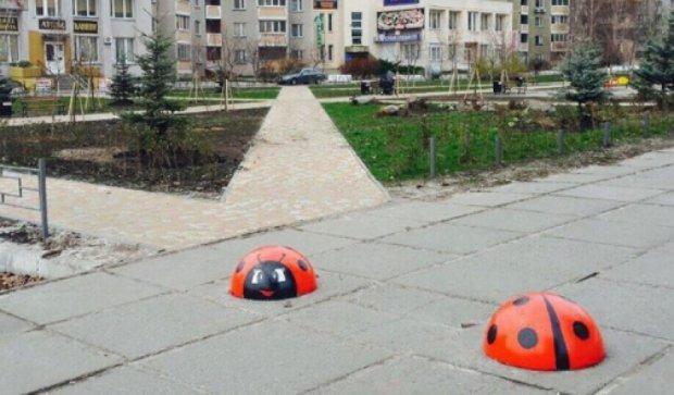 В Киеве «завелись» две гигантские божьи коровки (фото)