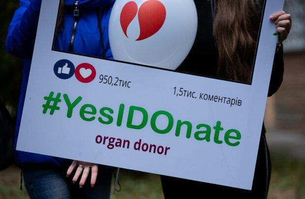 """З новим серцем: вінничани висадили """"Алею життя"""" в подяку за чужі органи"""