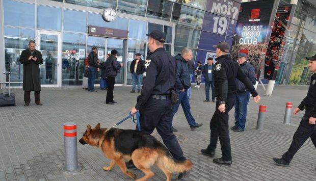 Львів атакували військові з собаками, поводяться дивно: що коїться
