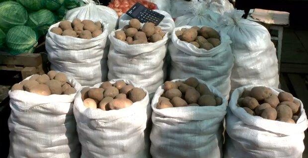Картопля, скріншот із відео