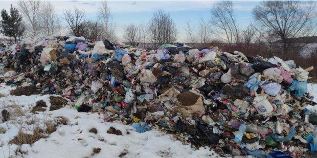 Тонны львовского мусора сбросили украинцам под нос, злости не хватает: у вас совесть есть?