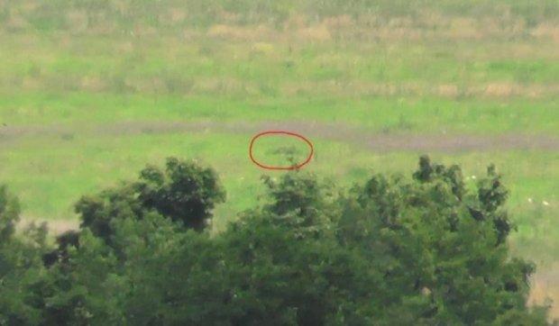 """""""Правий сектор"""" знищив снайпера терористів на Донбасі"""