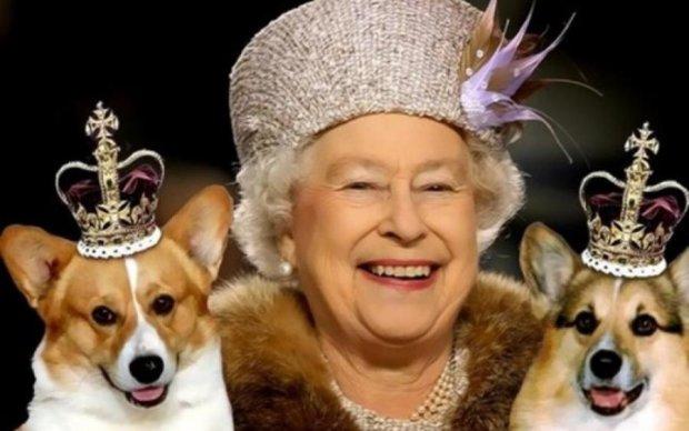Королева показала, як ставиться до найкращого друга Меган Маркл