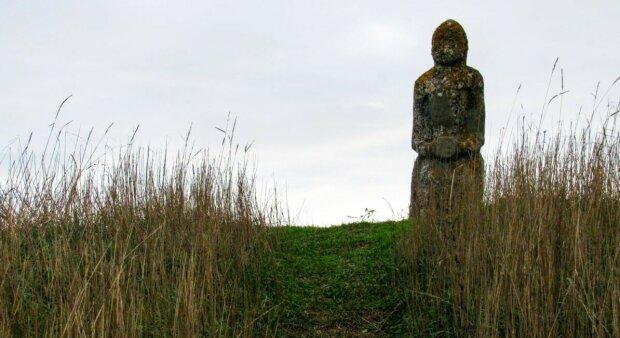 """Под Запорожьем """"черные археологи"""" сравняли скифский курган с землей: преступное кощунство поймала камера"""