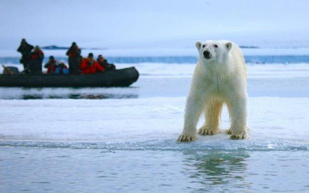 Все у крові: ведмідь замінив рибу туристами