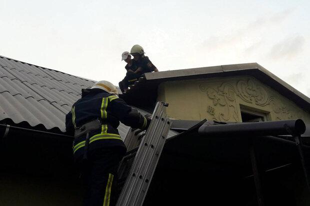 """Під Дніпром крихітку знімали з даху будинку, висота страшна: """"Допоможіть!"""""""