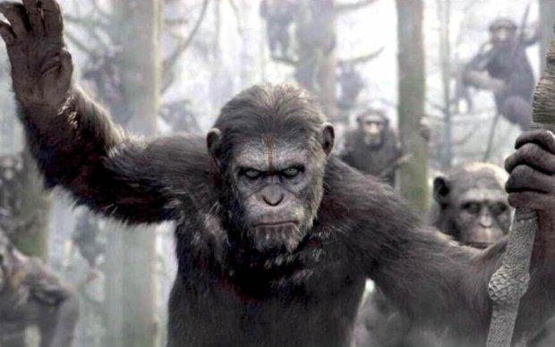 """Опубликован новый трейлер фильма """"Планета обезьян: Война"""""""