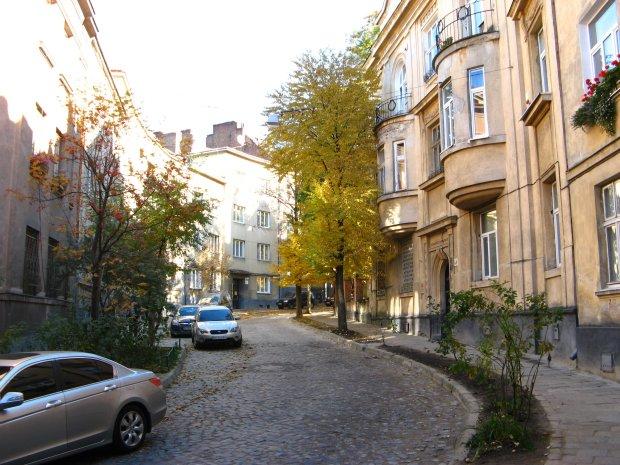 Погода в Львове на 13 августа: лето разгуляется на полную