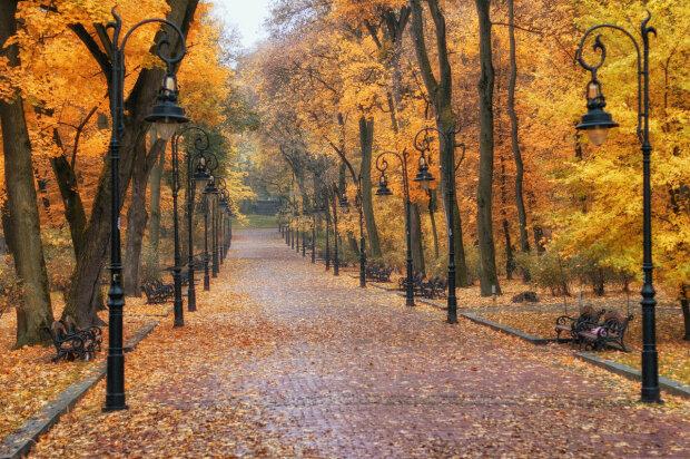 Львів, парк, декоративне фото