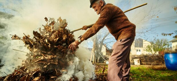 Спасатели откроют охоту на поджигателей листвы: где и когда