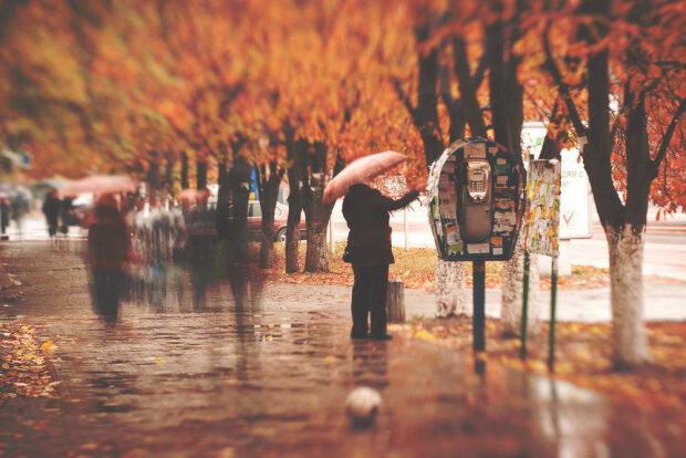 Стихия в Запорожье подмочит репутацию: захватите зонтики 29 ноября