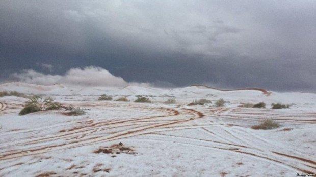 """""""Боги, наверное, сошли с ума"""": пустыню засыпало снегом, метеорологи сбиты с толку"""