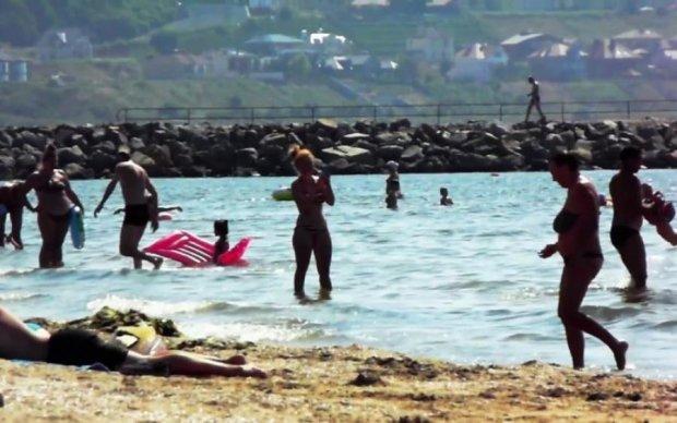 И мы в этом плаваем: экологи показали содержимое Черного моря