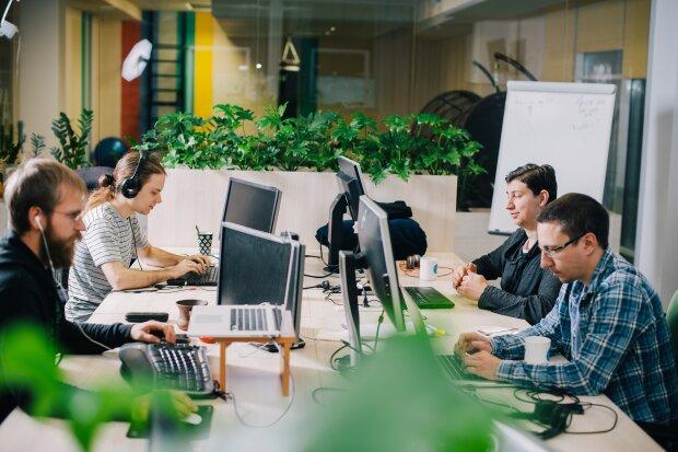 Робота в офісі, фото Transferwise