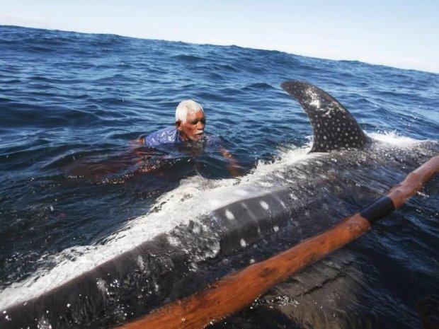китобойный промысел