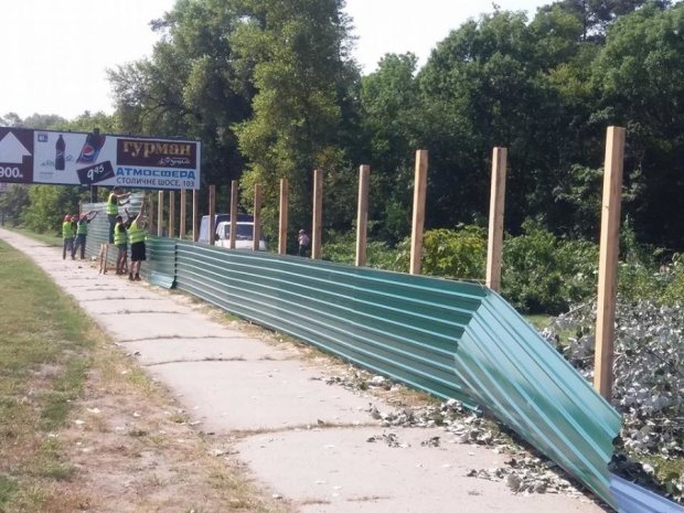 """Київзеленбуд"" захищає автозаправки, а не дерева? (ФОТО)"