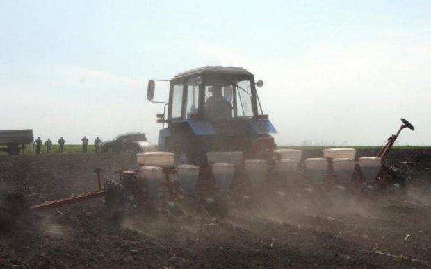 Чого українцям чекати від земельної реформи