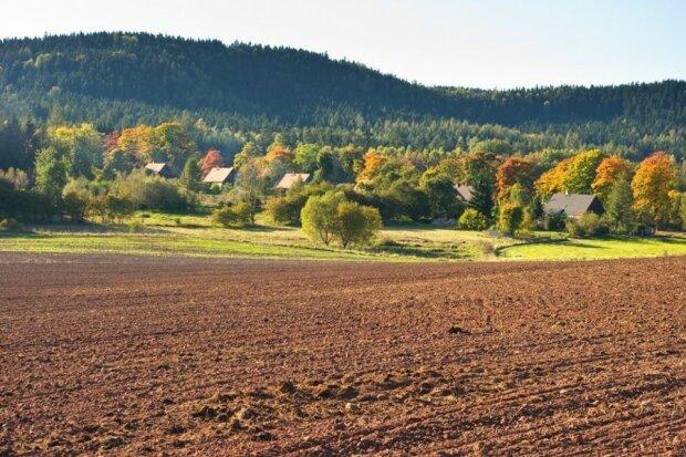 Продажа земли, фото: Zik