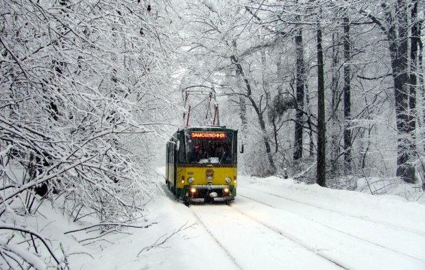 Як курсуватиме столичний транспорт на Різдво: киян змусять повірити у диво