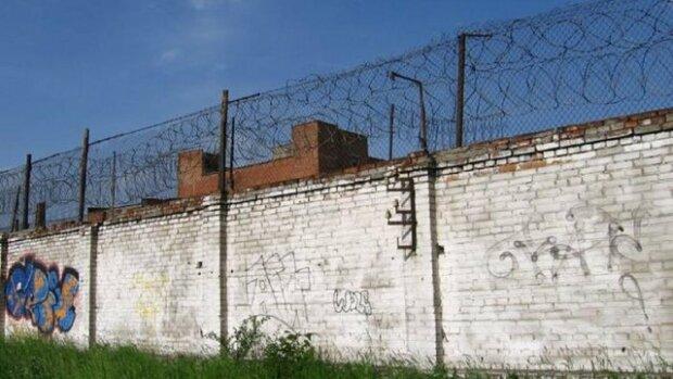 Во Львове двое заключенных решились на побег из колонии - две робы, лай собак и колючая проволока