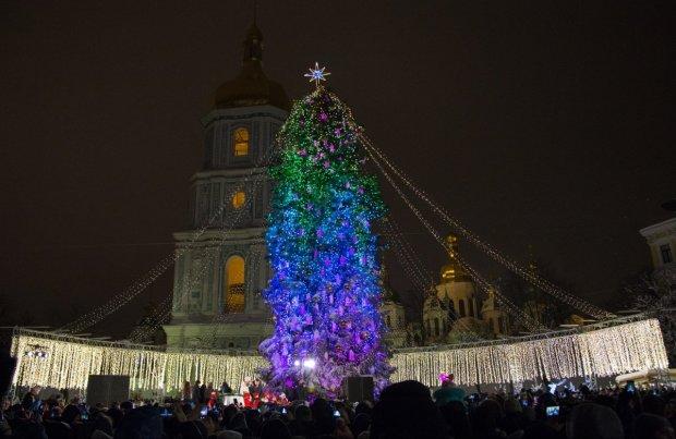 Новогодние праздники заканчиваются, главную елку страны разбирают и подводят итоги: тонны глинтвейна и мяса