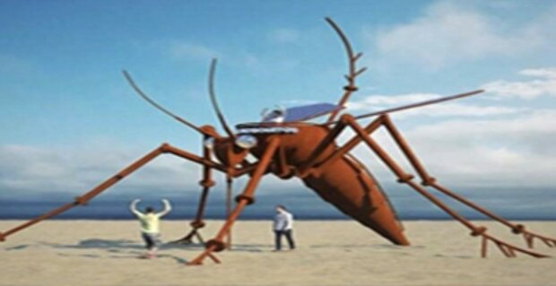 Комар, скриншот видео
