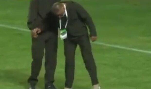 Змія на футбольному полі, кадр з відео