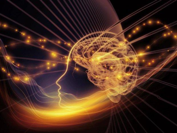 У гіпокампі людини існують нейрони часу: вчені все пояснили