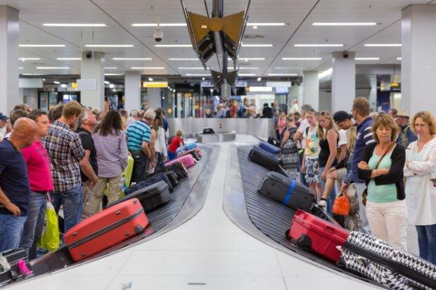 """Запах денег: в запорожском аэропорту пес унюхал """"черную"""" валюту"""