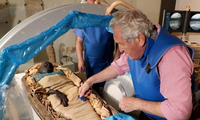 Європейка з додатковим зубом і зайвими хребцями: вчені розкрили таємницю 2600-річної мумії Такабуті