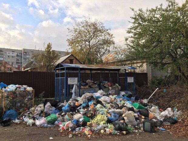 Вывоз мусора в Одессе, фото: Пушкинская