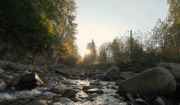 Карпатский биосферный заповедник, скриншот