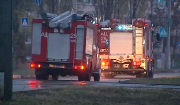 пожарные, скриншот из видео