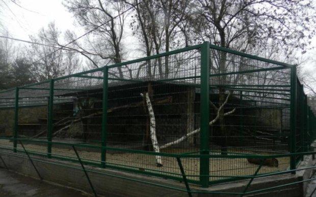 Такого еще не было: в украинском зоопарке настоящий переполох