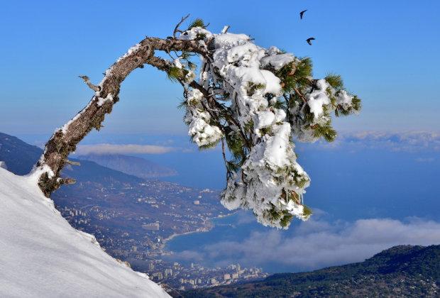 заснеженная гора Ай-Петри