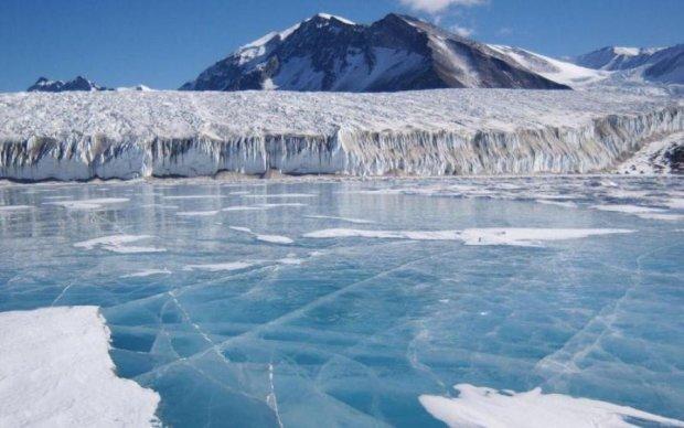 Невероятная находка в Антарктиде заставляет переписать историю