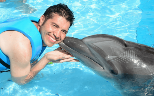 Виривають на живе: чим розплачуються доброзичливі дельфіни за ваші фото в соцмережах