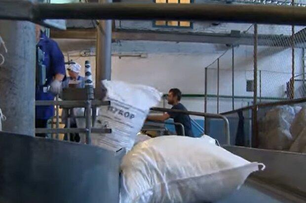 Сахарный завод, кадр из видео