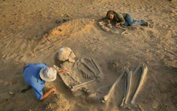 Сенсационная находка: древнейший череп заставит пересмотреть историю