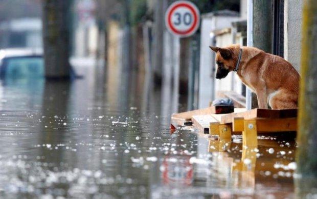 Небувалий шторм в Запоріжжі: нові подробиці з місця події