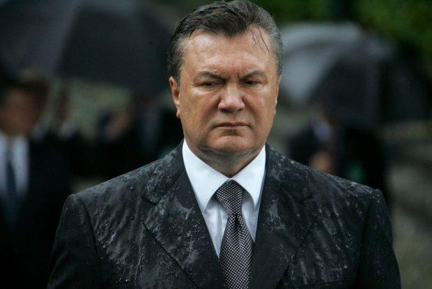 Самозбереження нуль: Янукович раптом очуняв і побіг плакатися до суду