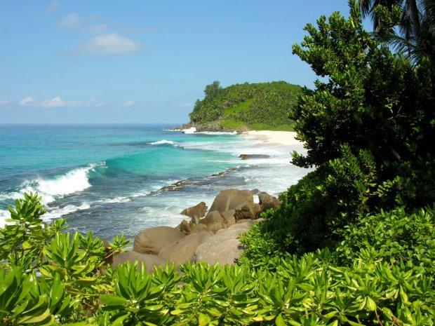"""Тварини з минулого заполонили райський острів: воскресли після тисячолітньої """"сплячки"""""""