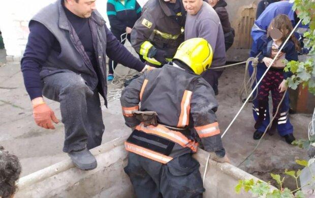 Спасатели, скриншот: YouTube