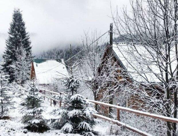 У Карпати прийшла зимова казка: в мережі з'явилися чарівні знімки білосніжного покриву