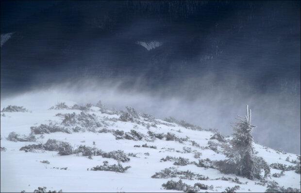 """Снежный апокалипсис сковал Карпаты, спасатели срочно обратились к украинцам: """"Не высовывайтесь!"""""""
