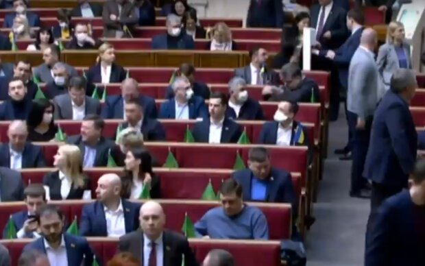 Верховна Рада під час карантину, скріншот: YouTube