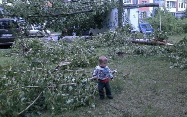 Московский ураган продолжает уносить жизни