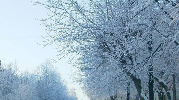 """Зима образилася на Запоріжжя: ловіть """"осінній"""" прогноз на 3 січня"""