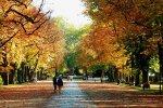 осінь, фото Pxhere