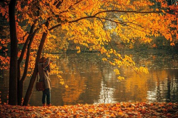 осінь, фото: pxhere